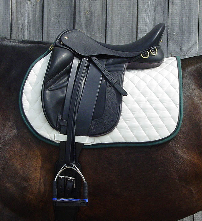 Black Country Equinox Saddle for Sale